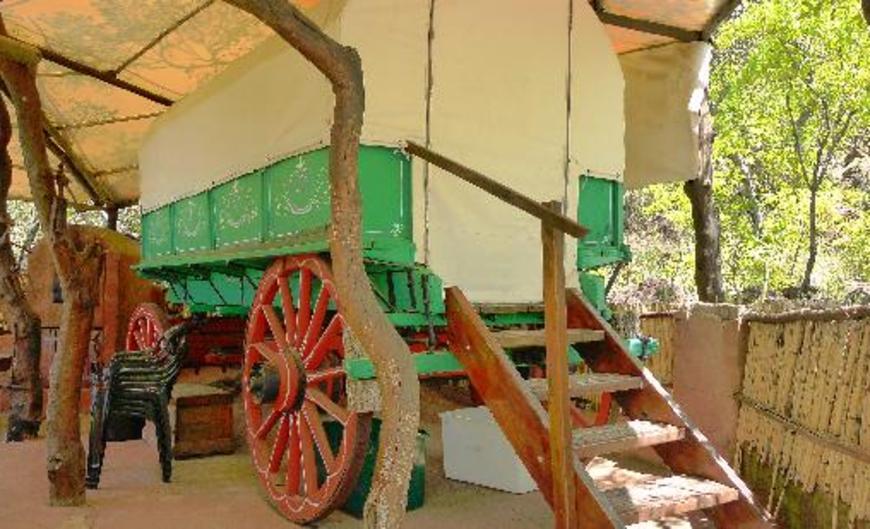 Tussen-I-Bome Guest Farm Guest house